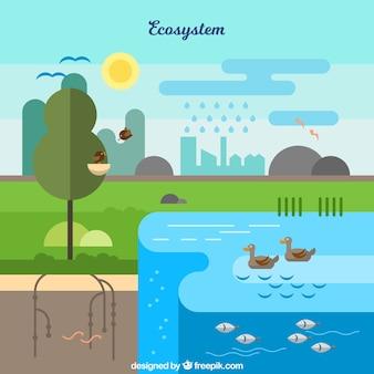 Concepto creativo del sistema eco