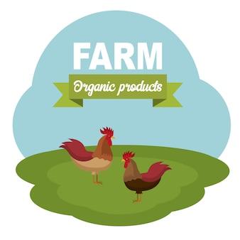Concepto para la cría de animales y alimentos de carne ecológica.