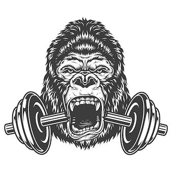 Concepto de culturismo con gorila