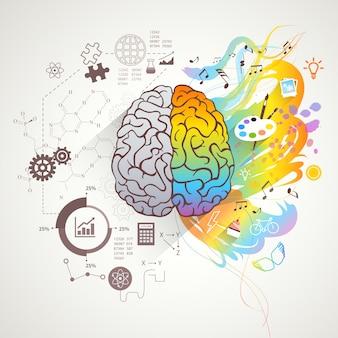Concepto de cerebro izquierdo derecho