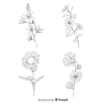 Concepto de dibujo realista de la colección de flores.