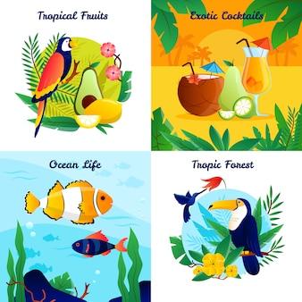 Concepto de diseño tropical con frutas exóticas cócteles océano vida vector ilustración
