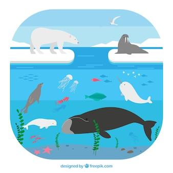 Concepto del ecosistema del ártico