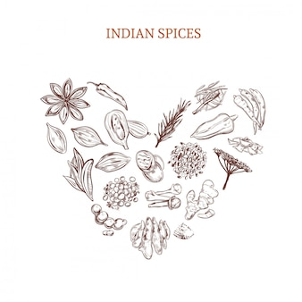 Concepto de especias indias dibujado a mano