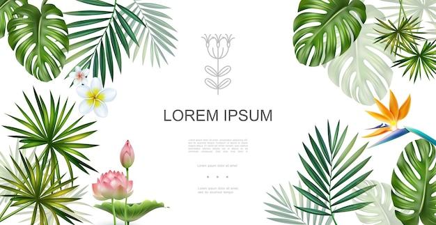 Concepto floral realista de plantas tropicales con frangipani lotus ave del paraíso flores monstera y hojas de palma