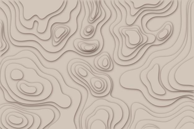 Concepto de fondo del mapa topográfico