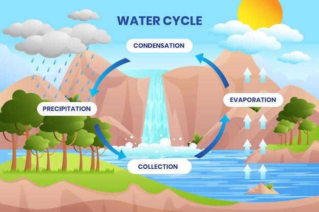 Concepto ilustrado del ciclo del agua