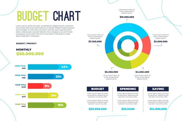 Concepto de infografía presupuestaria