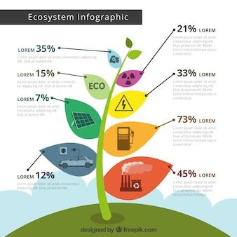 Concepto infográfico del ecosistema