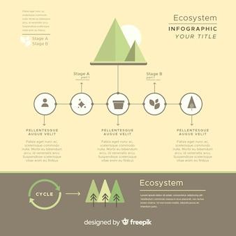 Concepto informativo infográfico de ecosistema