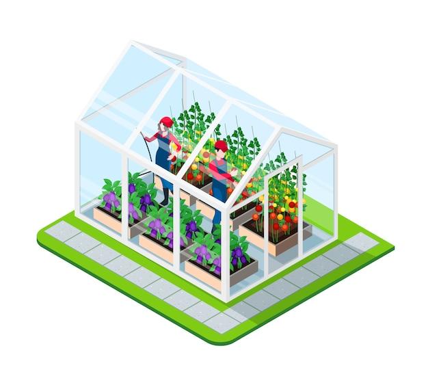 Concepto isométrico de invernadero