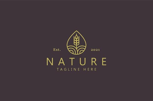 Concepto de logotipo de trigo agrícola de forma de gota de agua