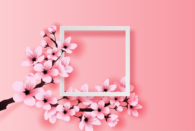 Concepto de marco blanco primavera temporada flor de cerezo