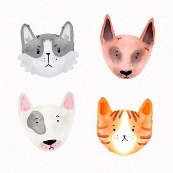 Concepto de mascotas diferentes
