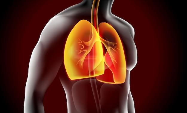 Concepto médico de la ilustración de rayos x de pulmón
