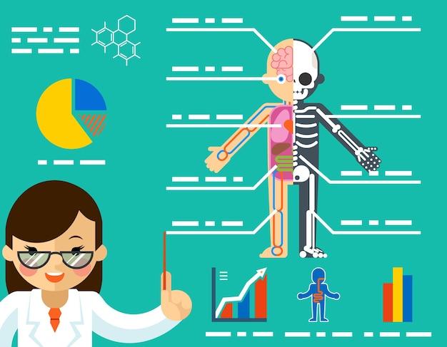 Concepto médico. mujer médico que muestra la anatomía.