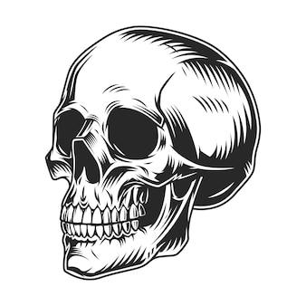 Concepto monocromo de cráneo humano vintage