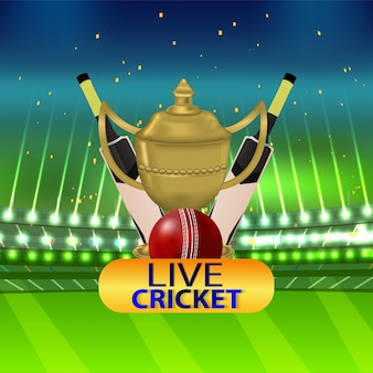 Concepto de partido de cricket con estadio