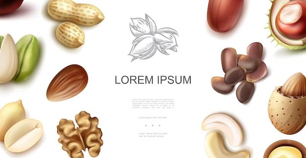Concepto realista de frutos secos naturales con anacardo, nuez, pistacho, almendra, cacahuete, avellana, nueces de cedro.