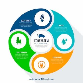 Concepto redondo de infográfico del sistema ecológico