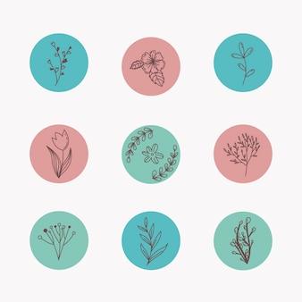 Concepto de resaltado de historias florales dibujadas a mano de instagram
