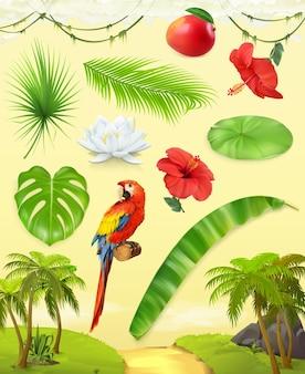Concepto de selva. conjunto de frutas tropicales e ilustración de loros.