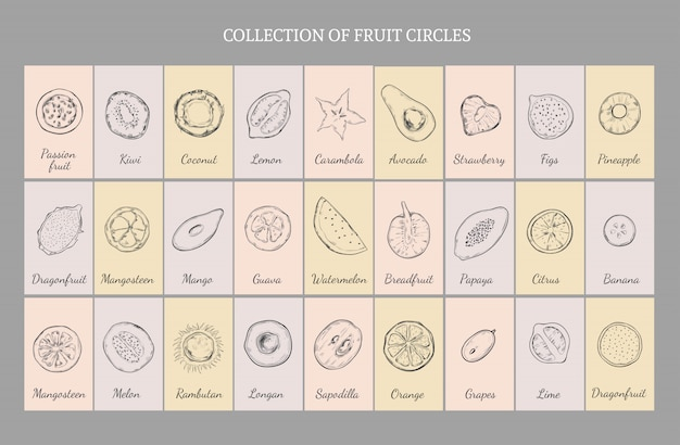 Concepto de tabla de frutas saludables dibujadas a mano