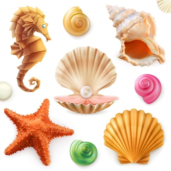 Concha, caracol, molusco, estrella de mar, caballito de mar. conjunto 3d