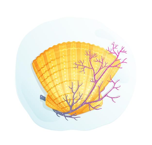 Concha de mar y coral