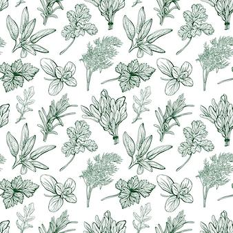 Condimentos y hierbas de patrones sin fisuras