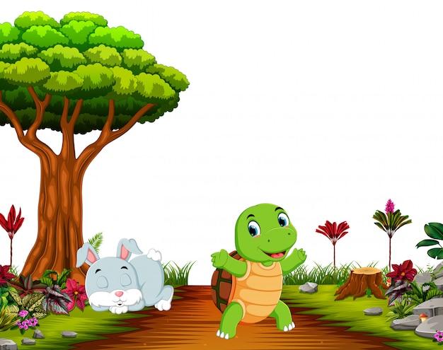Un conejito duerme bajo el árbol mientras la tortuga corre por el camino.