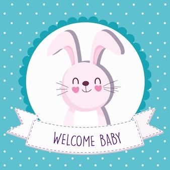 Conejo de baby shower