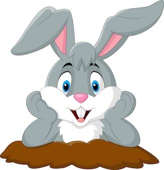 Conejo de dibujos animados salir del agujero