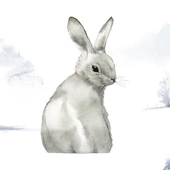 Conejo gris salvaje en un paraíso invernal
