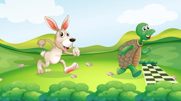 Conejo y tortuga en la carrera.