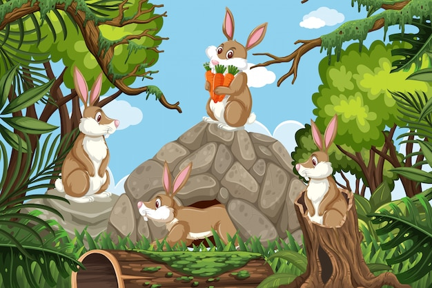 Conejos en escena de la jungla