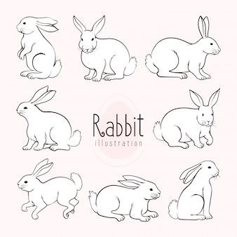 Conejos lindos, ilustración de arte lineal simple,