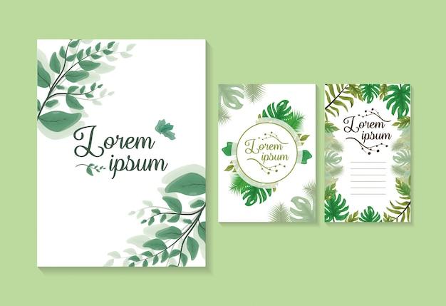Conjunto de 3 tarjetas o invitaciones de hojas verdes, plantilla para personalizar con espacio para agregar texto