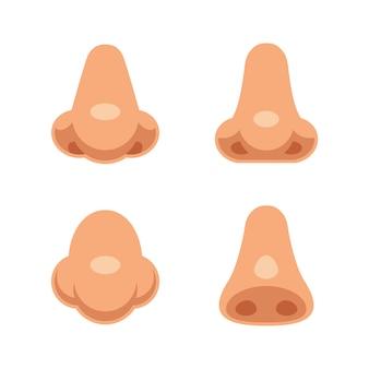 Un conjunto de 4 narices humanas de dibujos animados. partes del cuerpo aisladas