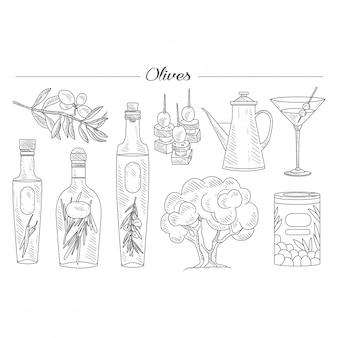 Conjunto de aceite de oliva y rama dibujado a mano
