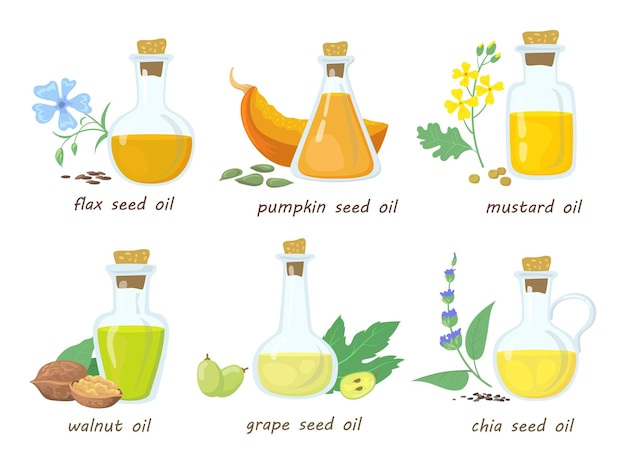 Conjunto de aceites vírgenes vegetales de dibujos animados en frascos de vidrio. ilustración plana.