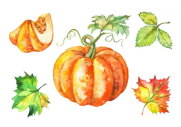 Conjunto de acuarela calabaza y hojas de otoño.