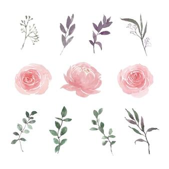 Conjunto de acuarela colorida flor y follaje ilustración de elementos aislados en blanco.