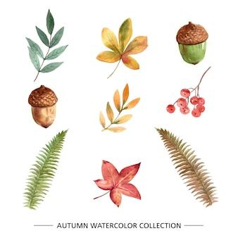 Conjunto de acuarela creativa otoño