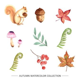 Conjunto de acuarela elemento otoño