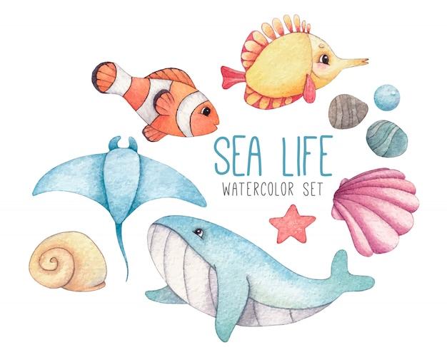 Conjunto de acuarela de peces tropicales, ballena azul, mantarraya, conchas y estrellas de mar