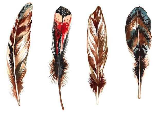 Conjunto de acuarela de plumas dibujadas a mano sobre fondo blanco