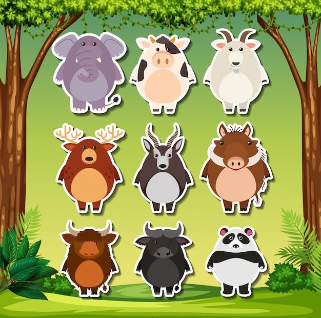 Conjunto de adhesivo de animales salvajes.