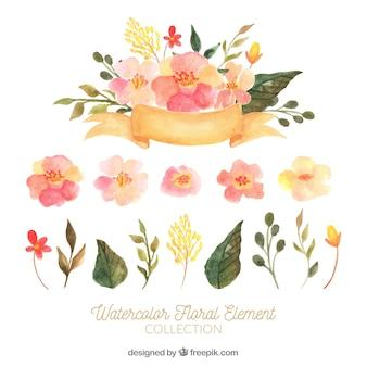 Conjunto adorable de elementos florales en acuarela