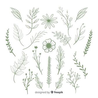 Conjunto de adornos florales dibujados a mano